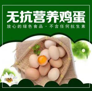 雷火竞技亚洲营养雷火电竞官网app